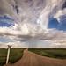 Rainstorm over Arizona Plain