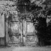 Old wooden gates, peeling