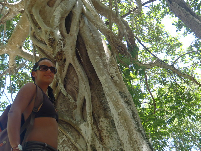 Jardin del eden cenote quintana roo mexico by for Jardin del eden