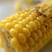 Corn - August 24th 2012