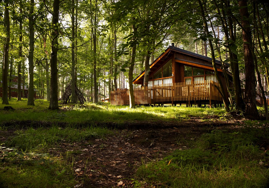 Best Places To Build A Cabin