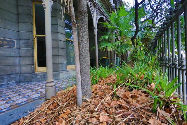 Melbourne tasma terrace img 5233 flickr photo sharing for 18 jolimont terrace east melbourne