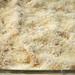 mushroom prosciutto lasagna 8
