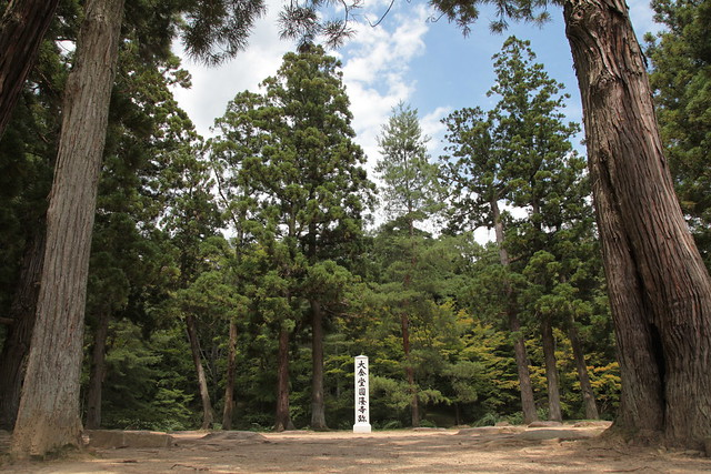 毛越寺の画像 p1_12