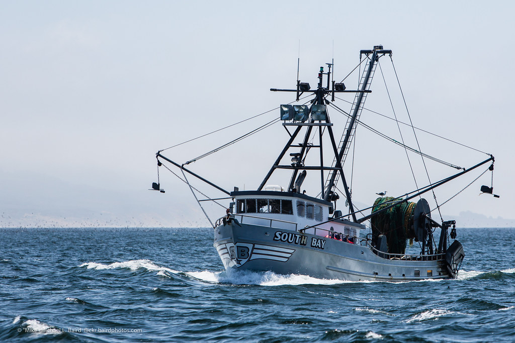 Commercial fishing vessel named south bay morro bay ca for What is commercial fishing