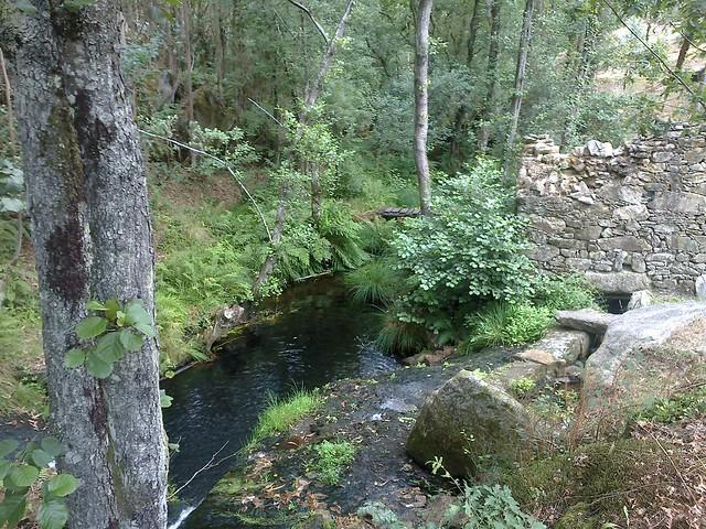 Río y Molino en Coirós