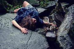 The Fallen by Monika Krupicka
