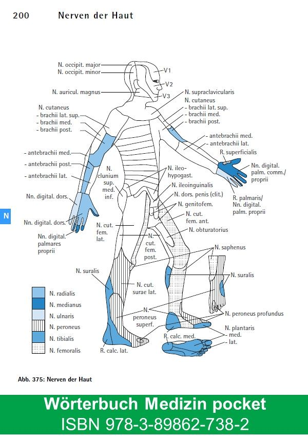 Wörterbuch Medizin pocket - Kleines Lexikon : Medizinische… | Flickr