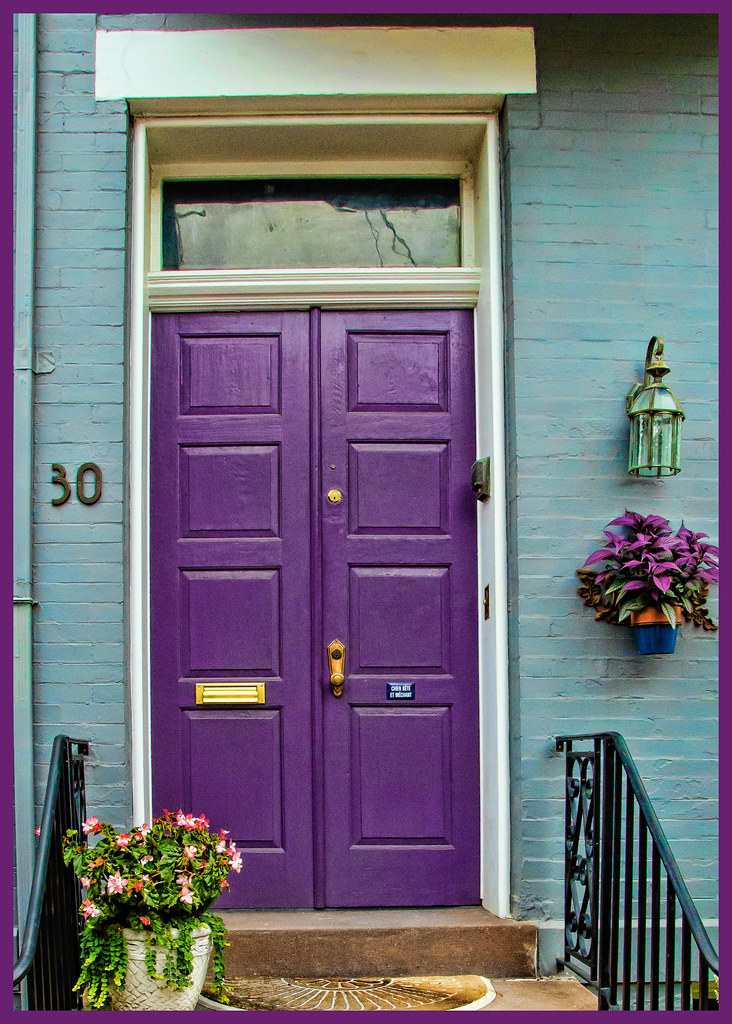 Purple Door Margaret Was Attacted To The Purple Leaves
