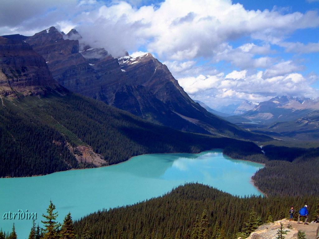 Peyto lake banff national park alberta canada peyto for L shaped lake