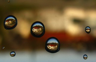 IMG_2839 Regentropfen / Raindrops / 180° gedreht | by Traud