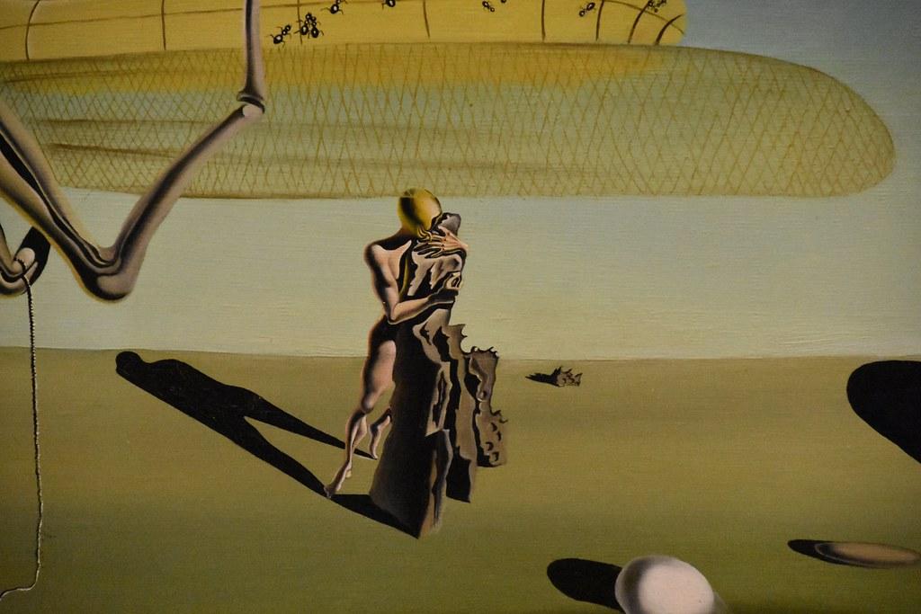 http://www.heggenes.com/library.php?q=e-poi-chi-lo-porta-fuori-il-cane-2012.html