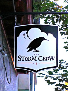 The Storm Crow | by knightbefore_99
