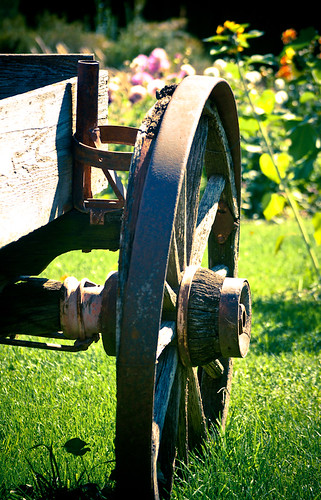 Wagon Wheel in the Grass | by Orbmiser