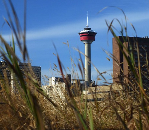 Calgary Tower with grass | by benlarhome