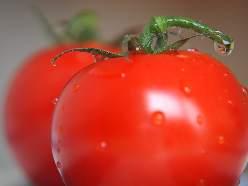 Tomatoes close-up | by travelibrary