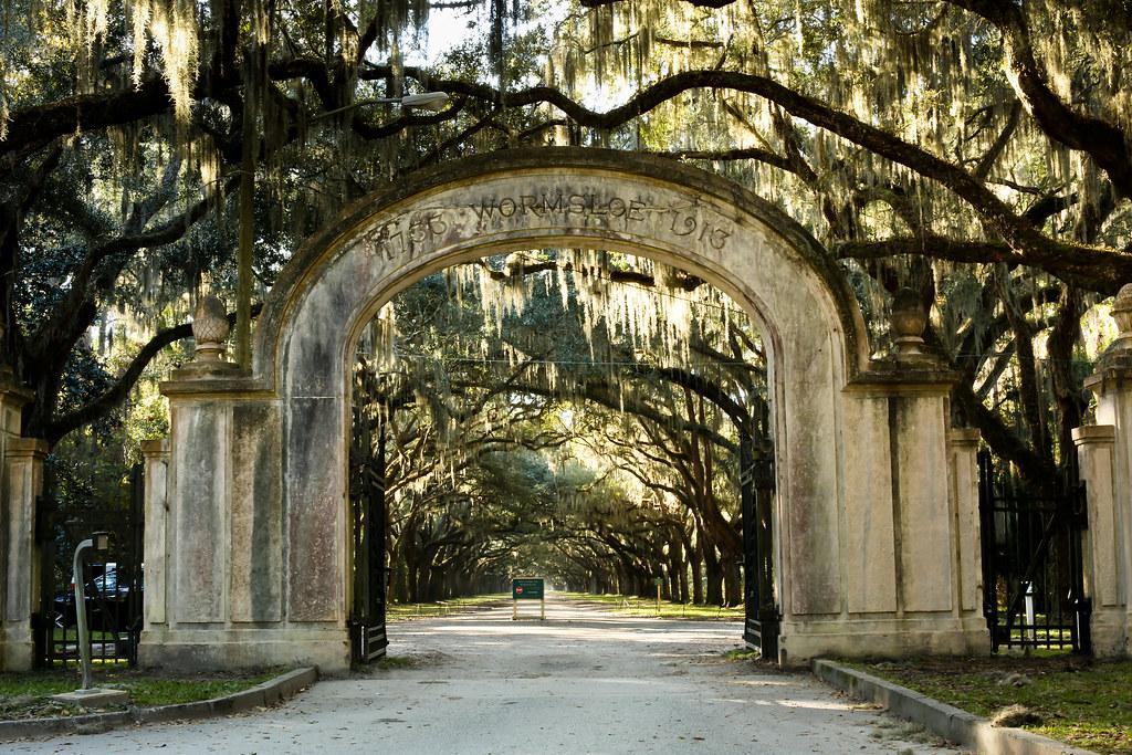 Wormsloe Plantation Entrance In Savannah Georgia Photo