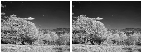 Twin Peaks Infrared | by turbguy - pro
