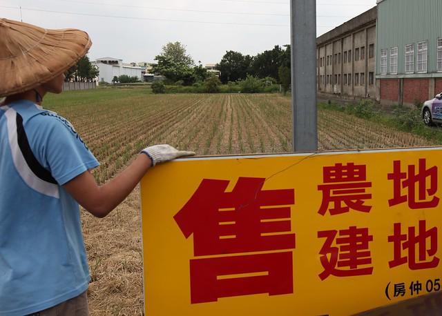 2012.07農地受到汙染之後,農民只好無奈的放棄土地。 照片來源:柯金源