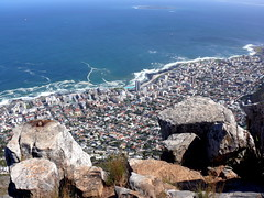 Sea Point from the Summit of Lion's Head