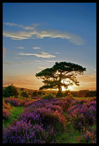 Bratley View sunset | by muddlemaker1967