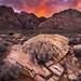 Desert Flames