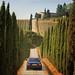 On our way to wine estate Casale Dello Sparviero