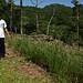 Uso potencial de los suelos de la Cuenca del río Torola | Programa ART PNUD