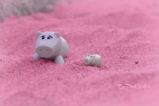 Two little piggies !...♥ | by Pink♥World
