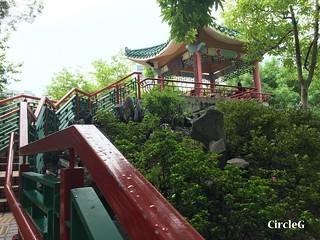 CIRCLEG 香港 遊記 美孚 嶺南之風 荔枝角公園  (3)