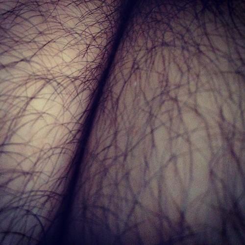 Kiss my hairy butt