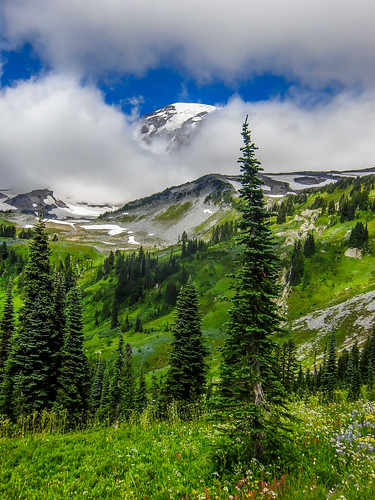 Rainier poking through the clouds in Paradise | by pvdEric