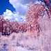 Infrared path-7030