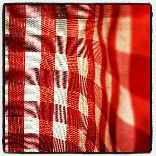 gingham pizzeria curtain | by Alissa Hankinson