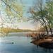 Spring on the Potomac