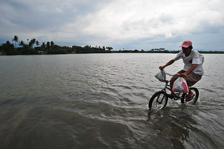 A man and his bicycle seem to float on water as the road | by IRRI Images