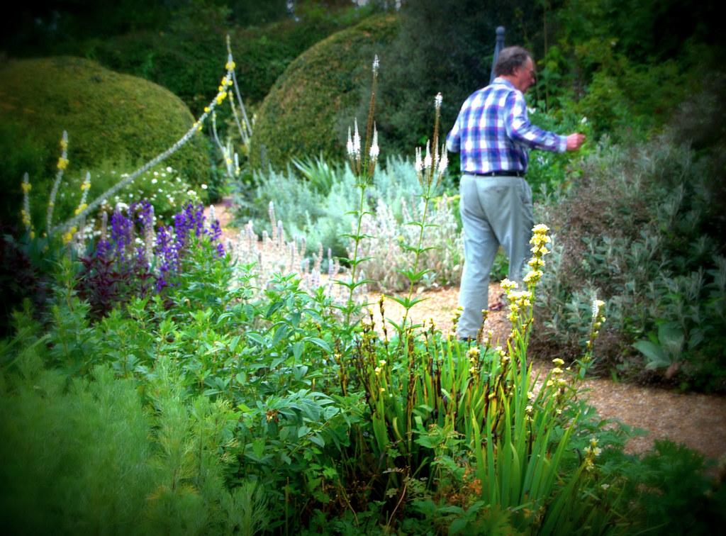 John brookes gardening at denmans elspeth briscoe flickr - Garden design john brookes ...