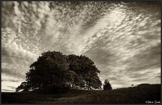 Cloudage!! | by Martin Steele.