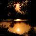 Sunset in Amazon