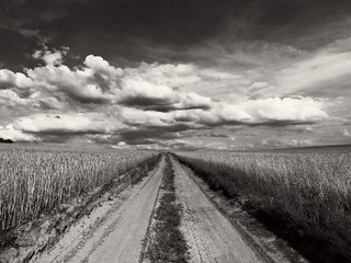 road | by JoannaRB2009
