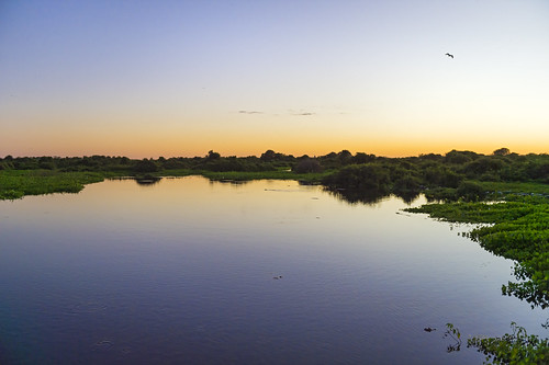 Pantanal sunset II | by Tambako the Jaguar