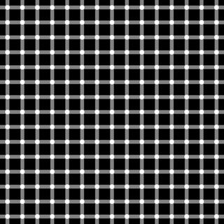 Optical illusion: There are no black dots | by Robson#