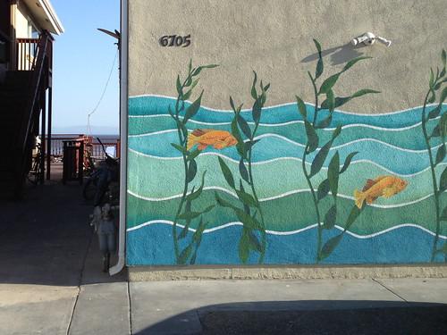 Img 0563 kelp and garibaldi fish yesss britta for Gustafson s smoked fish