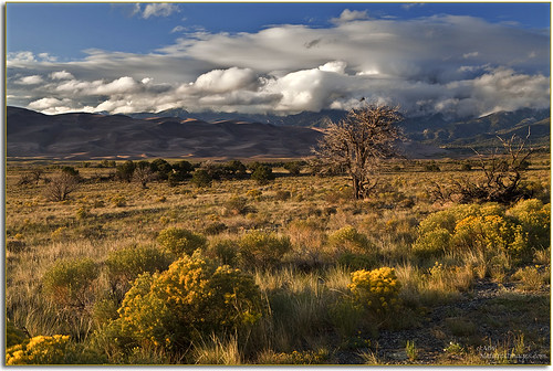 Great Sand Dunes NP&P 5, CO. | by JMW Natures Images