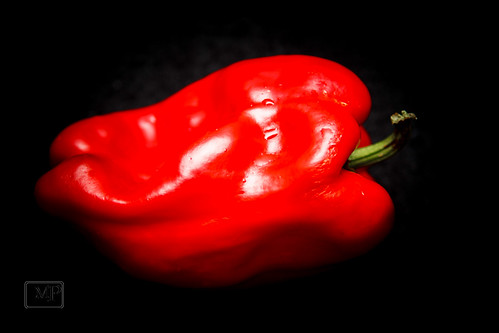 Red Pepper | by JMaz Photo