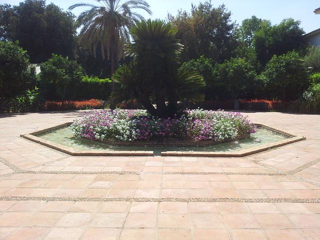 Real Jardín Botánico de Córdoba 1  Explore automocionas ph…  Flickr - ...