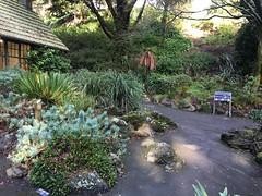 Jardín Botánico de Wellington