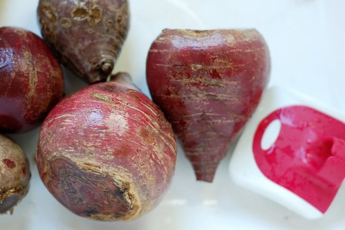 Washing beets by Eve Fox, Garden of Eating blog, copyright 2012 | by Eve Fox