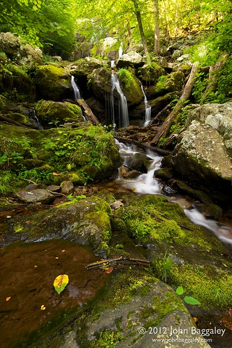 One leaf and a waterfall | by John Baggaley