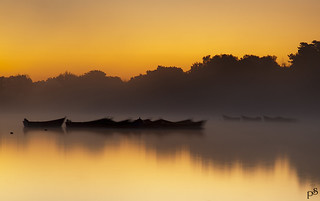Petersfield Lake Sunrise_1 | by pjs28jack ASINWP, ASITTP & LRPS